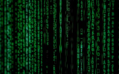 The vital importance of storage and backup in a data-driven world